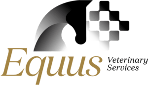 Equus Veterinary Services Adelaide